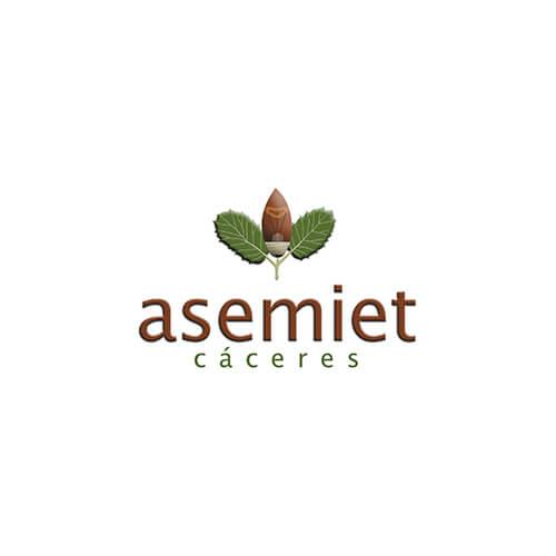 ASEMIET - Asociación Empresarial de Instaladores Electricistas y de Telecomunicaciones de Cáceres
