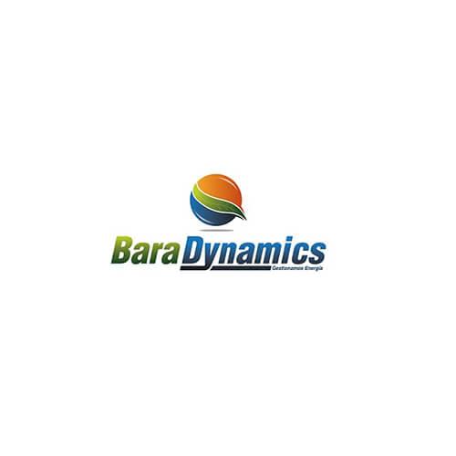 Bara Dynamics